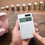 Borrowing Capacity Calculator Update – it has more lenders!