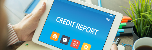 credit report for mag